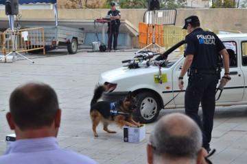13-11-14-Policía